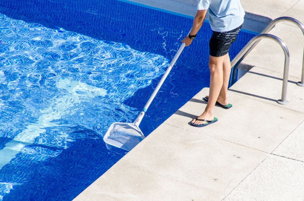 Pool Service Williamsville